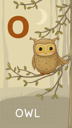 Animals ABC, letter O. Owl in alphabet card.  Vector