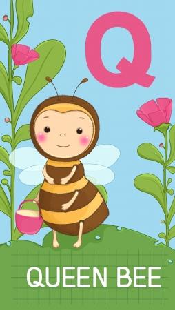Animals ABC, letter Q. Queen bee in alphabet card.  Vector