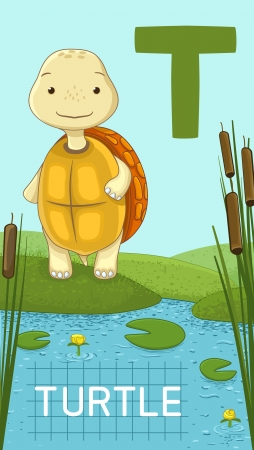 nenuphar: Animals ABC, letter T. Turtle in alphabet card.