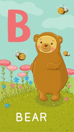 Animals ABC, letter B. Bear in alphabet card.  Vector