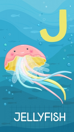 Animals ABC, letter J. Jellyfish in alphabet card.  Vector