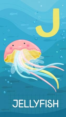 sealife: Animals ABC, letter J. Jellyfish in alphabet card.