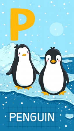 Animals ABC, letter P. Two Penguins in arctic habitat, alphabet card.  Vector