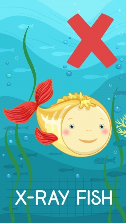 x xray: Animals ABC, letter X. X-ray fish in alphabet card.  Illustration
