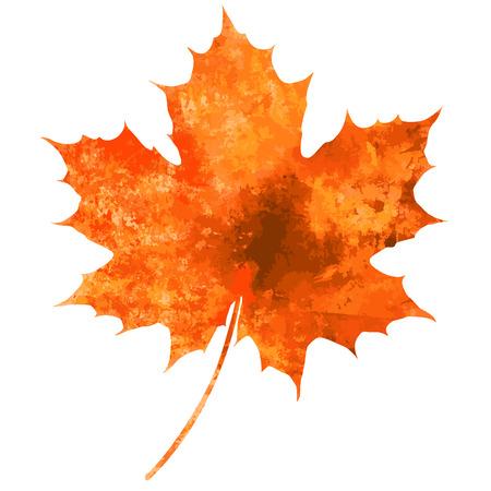 美しい水彩画の秋のコレクションの分離の白い背景を葉します。