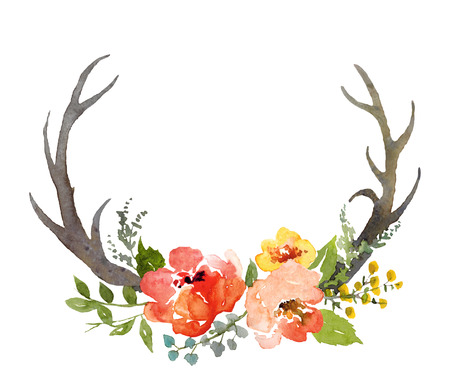 flower layout: Watercolor hand painted floral composition with deer horns, isolated in white. Stock Photo
