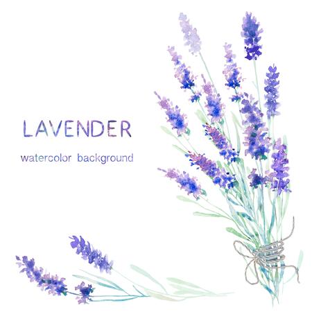 Watercolor lavendel achtergrond. Card, wenskaarten, uitnodigingen, en andere drukwerk projecten template. Illustratie van de waterverf.