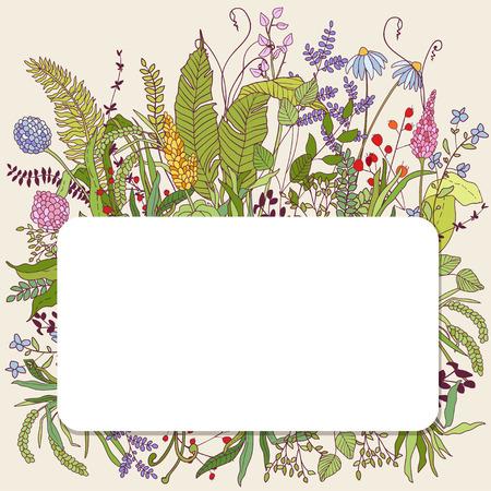 Concevoir avec des herbes et des oiseaux dessinés à la main. fond botanique décoratif