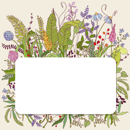 Design with hand drawn herbs and bird. Decorative botanical background