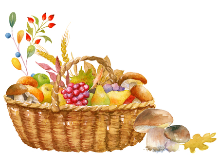 Autumn thanksgiving card template, watercolor hand painted, isolated, clipping path included, quick isolation. Pumpkin, apple, pear, mushroom, basket.