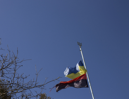 sector: Flag of Ukraine and the right sector against the sky
