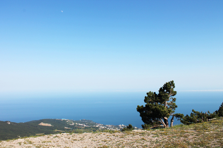 eagle canyon: View of the top of the mountain on the Black Sea, Crimea