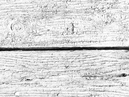 Ancient Cracked Wallpaper. Eroded Shabby Material. White Dry Frame. Modern Nature Construction. Gray Cracked Timber Wallpaper. Abandoned Wood Wall. Painted Cracked Timber Wallpaper. Foto de archivo