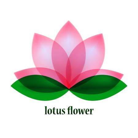 lily flower: Vector lotusbloem