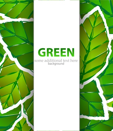 green leaves paper style background Vector