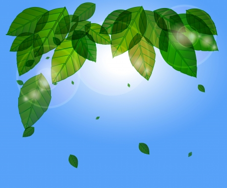 Vector shiny green background with leaves and flares Stock Vector - 14132655