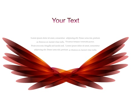 Vector color feather  wing background Vector
