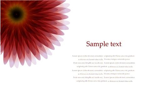 Vector red flower on white background Stock Vector - 14931842