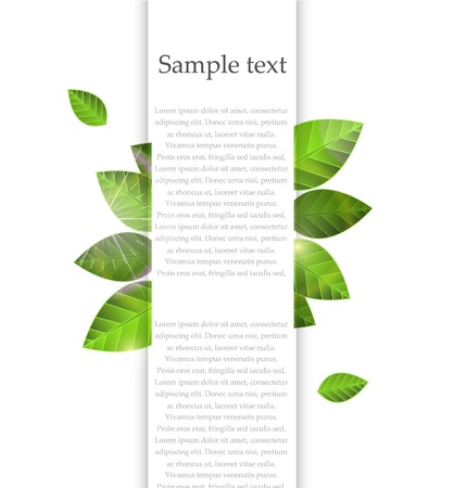 Vector green leaf banner with white Ilustrace