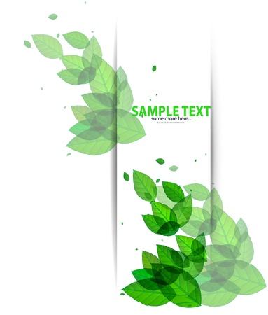 Shiny green leaves on white Stock Vector - 17863578