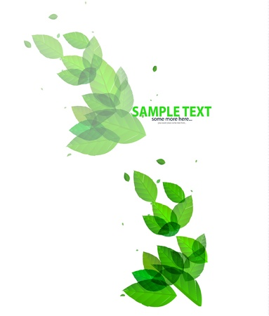 Shiny green leaves background Stock Vector - 17863441