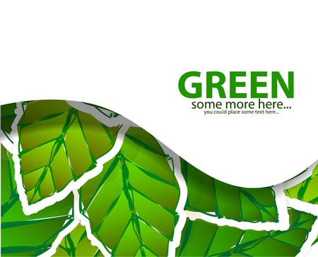 Green leaves background with white wave Stock Vector - 17863570