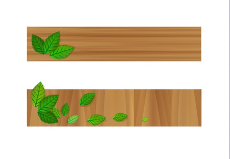 direction board: Vector wooden banners with leaves Illustration
