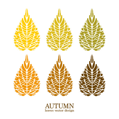 hojas de colores: El oto�o de hojas de colores establecido Foto de archivo