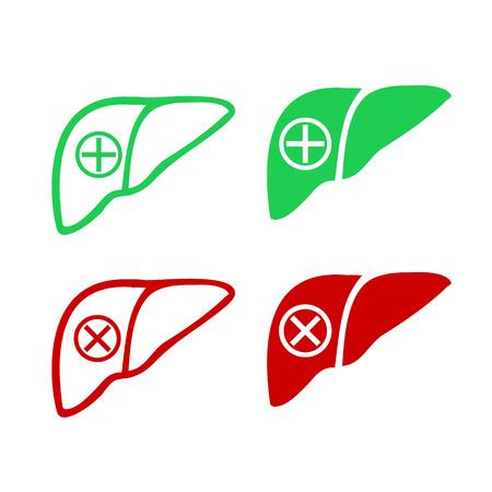 higado humano: Humano ic�nico logo h�gado, verde y rojo para el enfermo sana Vectores