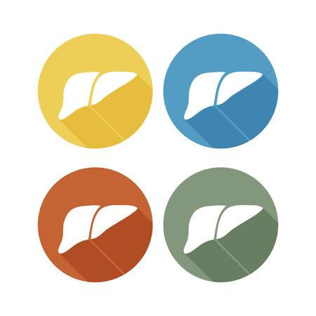 higado humano: Humano icono h�gado logotipo, dise�o plano sombra larga