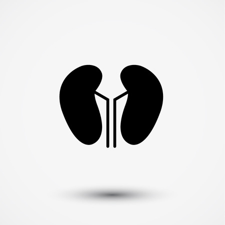 nephrology: Vector kidney icon. Human interrnal abdomen organs