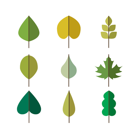 summer nature: Green vector leaves simple icons set for summer and nature