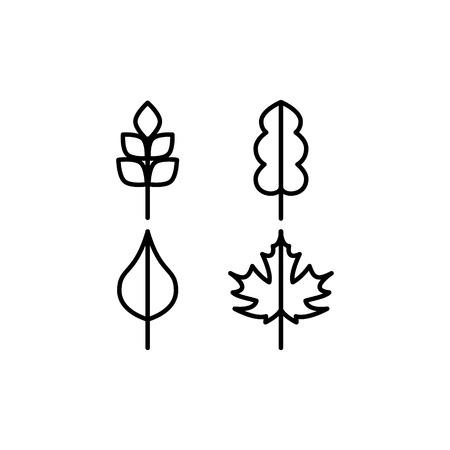 leaf line: Thin line vector tree leaf icons set Illustration