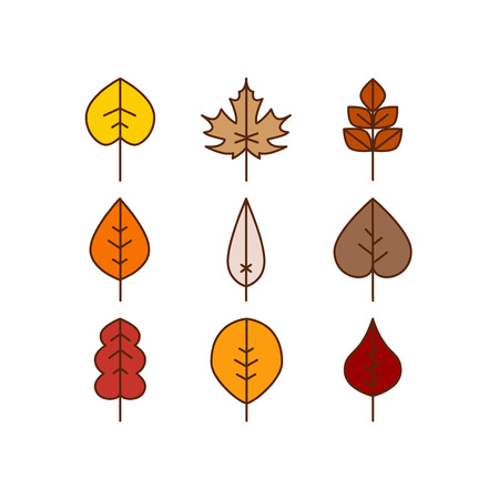 autumn colors: Vector autumn leaves red, orange yellow colors fall season Illustration