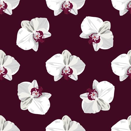 Pattern hand drawn orchid