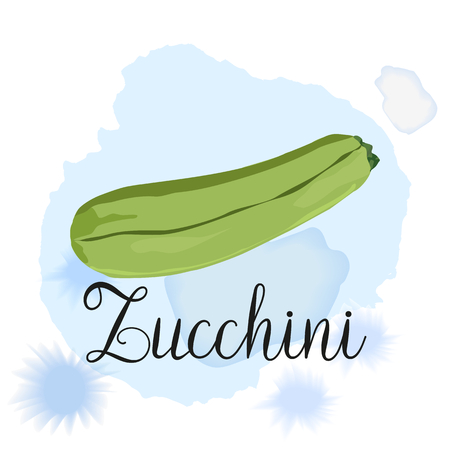 Hand drawn fresh zucchini isolated on white with lettering zucchini. Vector whole squash. Fresh vegetable zucchini. Organic food. Vegan organic ingredient.