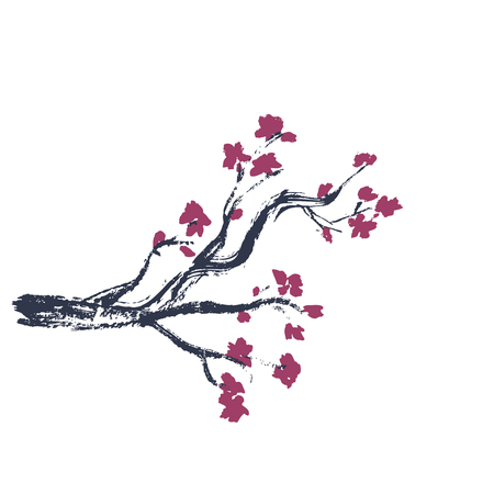 Isolated Sakura blossom 向量圖像