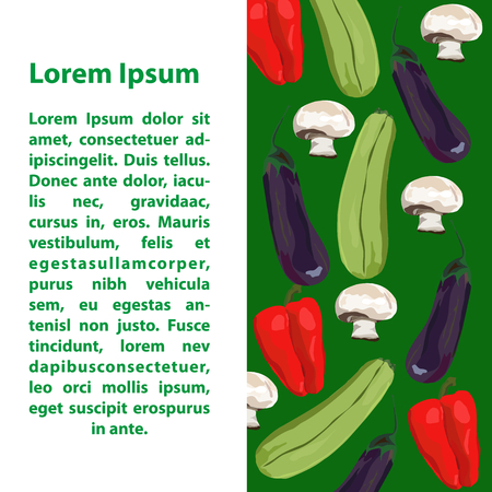 Fruit and vegetables. Vector. Hand drawn. Template. Eggplant, marrow squash, champignon, red pepper Green and white background