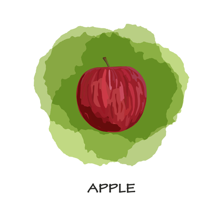 Red apple on green background. Vector. Hand drawn. Watercolor imitation. Isolated red apple.