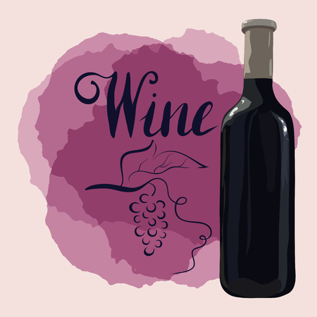 Bottle of red wine with hand drawn grapes 向量圖像