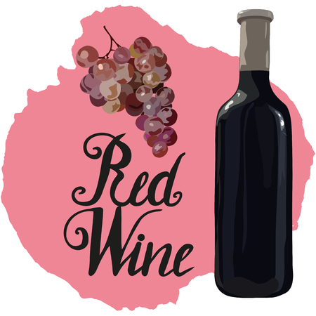 Bottle of red wine with hand drawn grapes and lettering red wine on wine stains. Vector. Watercolor imitation. Hand drawn.