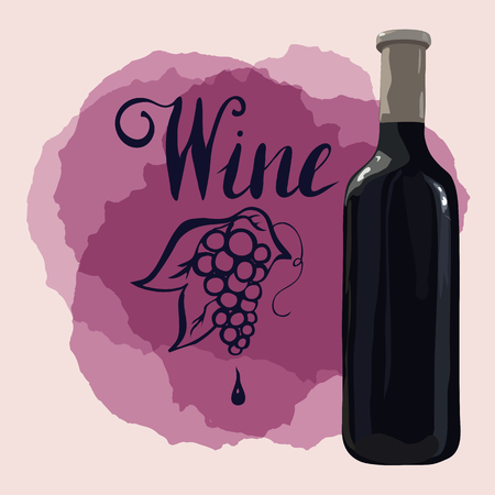 Bottle of red wine with hand drawn grapes and lettering wine on wine stains.