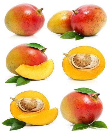 mango isolated: set of fresh mango fruits isolated on white background