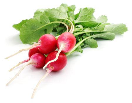 bunch fresh radish isolated on white background photo