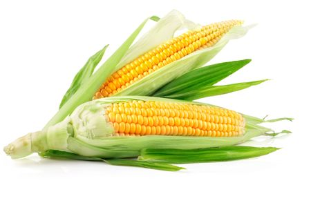 yellow corn: fresh corn fruits with green leaves isolated on white background