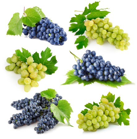 wine grapes: set fresh grape fruits with green leaves isolated on white background