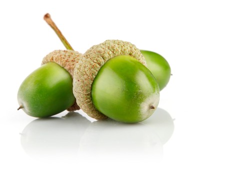 drie groene acornvruchten die op witte achtergrond worden geïsoleerd
