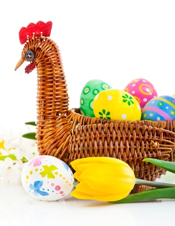 easter eggs in basket with yellow tulip flowers isolated on white background photo