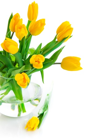 yellow tulip flowers in glass vase isolated on white background photo