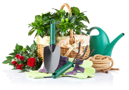 garden equipment with green plant and flower isolated on white background Stock Photo - 9222636